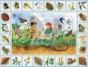 Objevné puzzle Na louce katalog