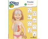 Piccolo - Tělo a zdraví  katalog